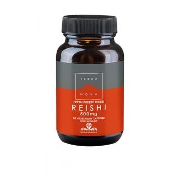 Reishi_500_mg.jpg