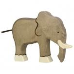 Goki elevant