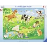 Ravensburger plaatpusle 35 tk Loomad aasal 4+