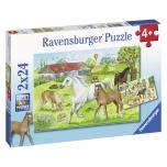 Ravensburger pusle 2x24 tk Hobused 4+