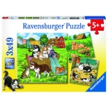 Ravensburger pusle 3x49 tk Kassid ja koerad 5+