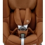 tobi_brown_authenticcognac_5pointsafetyharness_front.jpg